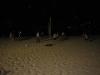 3rd-platoon-beach-party010